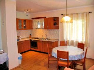 Apartments Marija - 13421-A2 - Bozava vacation rentals