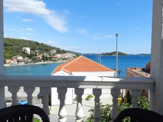 Apartments Ana - 20541-A1 - Tisno vacation rentals