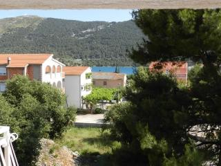 Apartments Ana - 26061-A3 - Northern Dalmatia vacation rentals