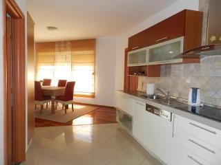 Apartment Ivica - 28551-A1 - Zadar vacation rentals