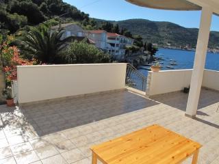 Apartments Ivanka - 40901-A4 - Vis vacation rentals