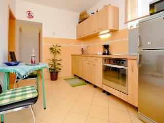 Apartments Jelena - 40981-A1 - Stanici vacation rentals