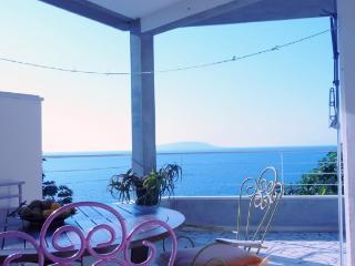 Apartments Vesela - 41241-A1 - Ploce vacation rentals