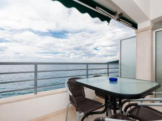 Apartments Šime - 41251-A1 - Drasnice vacation rentals