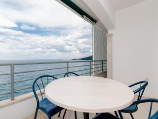 Apartments Šime - 41251-A2 - Drasnice vacation rentals