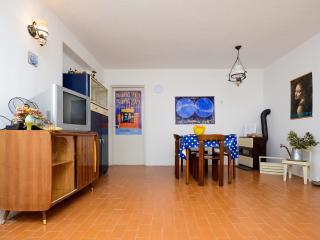 Apartments Nina - 61641-A1 - Barbat vacation rentals