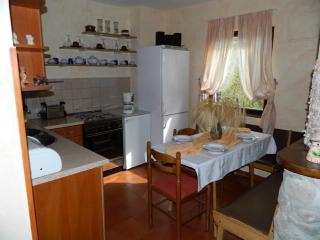 Apartments Ana - 63051-A1 - Karlobag vacation rentals