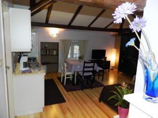 Apartment Vanja - 67151-A1 - Opatija vacation rentals