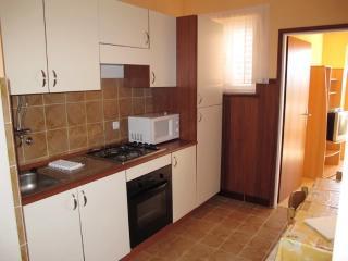 Apartments Darko - 68601-A1 - Palit vacation rentals