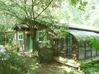 Luxury Cabin/Forest/Creek/Hot Tub/FP/Kid Friendly! - Hendersonville vacation rentals