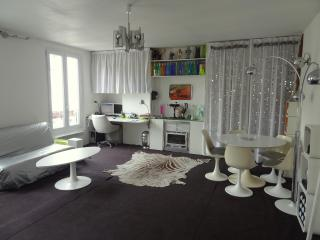 Entire flat (540ft² = 50m²) in central Paris - Paris vacation rentals