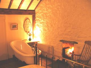 Cosy Romantic Welsh Cottage by Dolphin Bay - Boncath vacation rentals