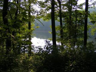 Catskill Lake House - Andes vacation rentals