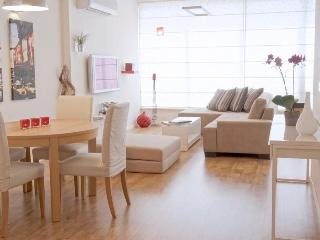 Beautiful modern 2 bedrooms with 2 bathrooms centrally located - Tel Aviv vacation rentals