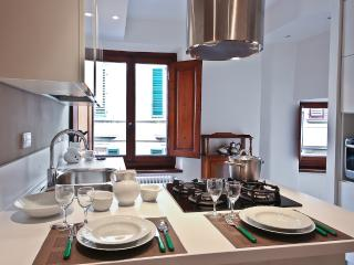 Cozy 2 Bedroom Apartment Rental in Florence - Donnini vacation rentals