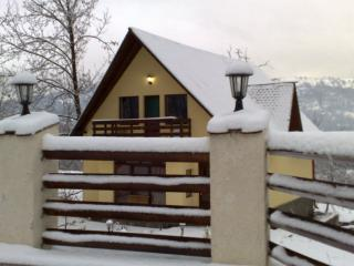 modern holiday home in the mountains - Traisteni vacation rentals