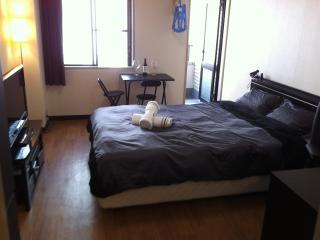 Excellent value in Central Tokyo! (Akasaka, Roppongi) - Tokyo vacation rentals