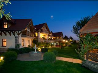 Palazzo Wellness Villa - Bogacs vacation rentals