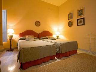Gardens Apartment Seville old town 3 pax - Sevilla La Nueva vacation rentals
