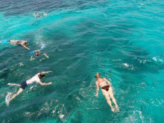 Angel Fish Cove in Tobago - cosy cabin with ocean view - Buccoo vacation rentals