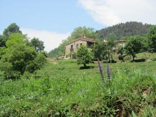A unique home in a privileged area of ​​Catalan Pyrenees. - Province of Girona vacation rentals