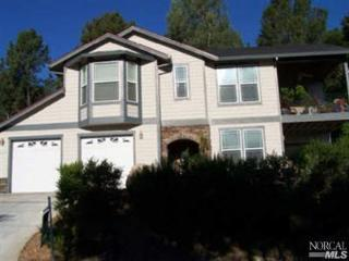 Awesome Lakeview House on Clear Lake-Pool & Lake Access! Hot-Tub!  Great Views - Kelseyville vacation rentals