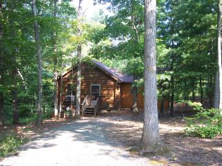 VA Cabin in the Woods - Virginia vacation rentals