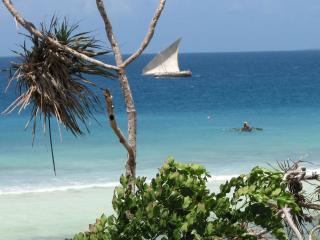 Unguja Lodge - Seaview Villa - Zanzibar Archipelago vacation rentals
