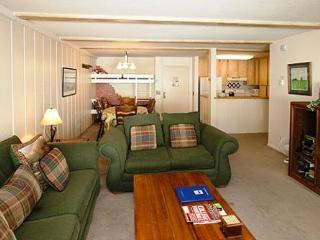 Summit Condo Well Located on 1st Floor  ~ RA567 - Mammoth Lakes vacation rentals