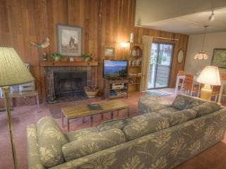 Coeur-Du-Lac Condo Walking Distance to Private Beach ~ RA673 - Incline Village vacation rentals