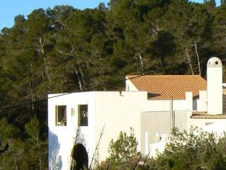 Finca in the mountains of Valencia , Cortes Pallas - Cortes de Pallas vacation rentals