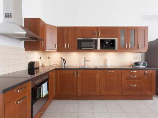 Amazing 3 bedroom apartment in Narodni Prague - Prague vacation rentals
