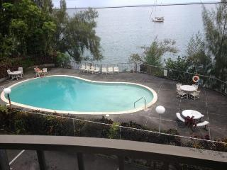 Ocean front condo  next to Reeds Bay in Hilo, HI - Hilo vacation rentals