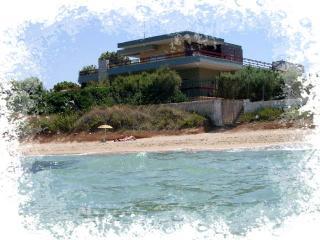 VILLA CAPITOLO: a terrace on the adriatic sea - Monopoli vacation rentals