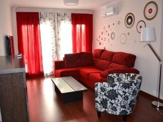Beautiful apartment, near the roman monuments - Mérida vacation rentals