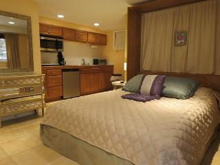 Sweet studio in DC neighborhood: walk to cafes, groc, bus to dntn & the Mall - Washington DC vacation rentals