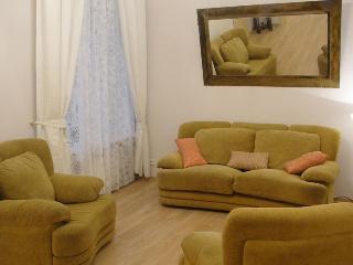 Symphony  2 bed rooms  Apartment on Nevskiy pr. - Saint Petersburg vacation rentals
