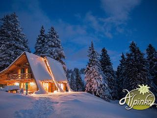 Chalet Alpinka - Cerklje vacation rentals