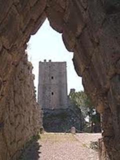 Large apartment in ancient elegant building - Image 1 - Arpino - rentals