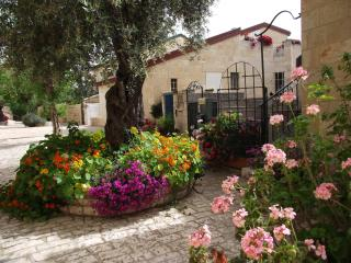 Avissar House / Under the Olive tree suite - United States vacation rentals