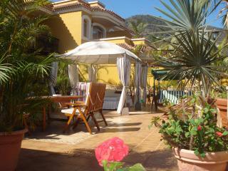 Luxe Apt. terrace seaview, BBQ, whirlpool Tenerife - Icod de los Vinos vacation rentals