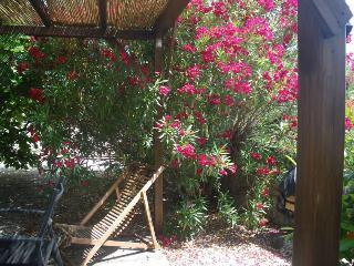 GITE DE CHARME AU PIED DES CEVENNES, ENTRE VIGNES ET GARRIGUE - Languedoc-Roussillon vacation rentals