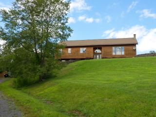 Scenic Views Home on Hill w/ Internet & Jacuzzi - Downsville vacation rentals