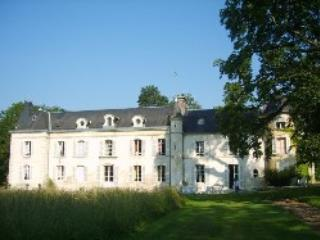 Large and confortable odging in Normandy 's castle on park near town and commodities - Ancinnes vacation rentals