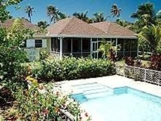 View from pool - Nisbet Beach, Nevis - Newcastle - rentals