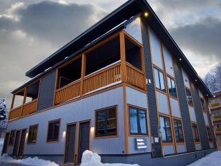Hakuba Gondola Apartments 2 Bedroom (ski-in) - Kitaazumi-gun vacation rentals
