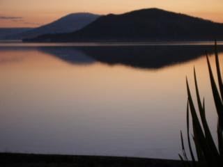 Lake Edge Rotorua New Zealand - Rotorua vacation rentals
