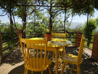 APARTMENT IN TIPICAL TUSCANY OLIVE OIL FARM - Reggello vacation rentals