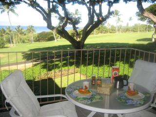 Elegant condo with gorgeous ocean and golf views - Kailua-Kona vacation rentals