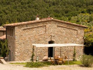 Villa Il Cavato a soli 18 km. da Firenze - Greve in Chianti vacation rentals